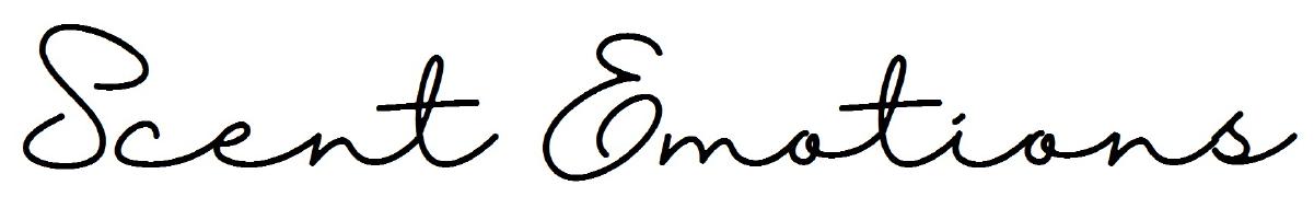 logo universitat girona